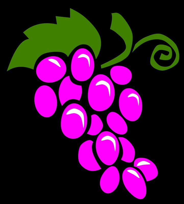 Grapes clipart cartoon. Simple fruit medium image
