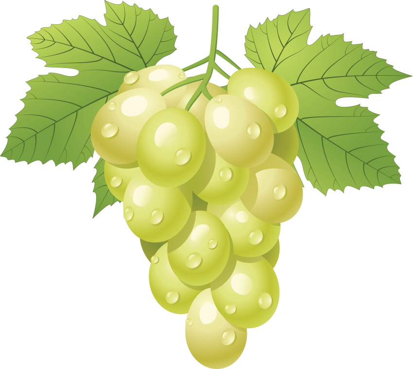 Green png free images. Grapes clipart face