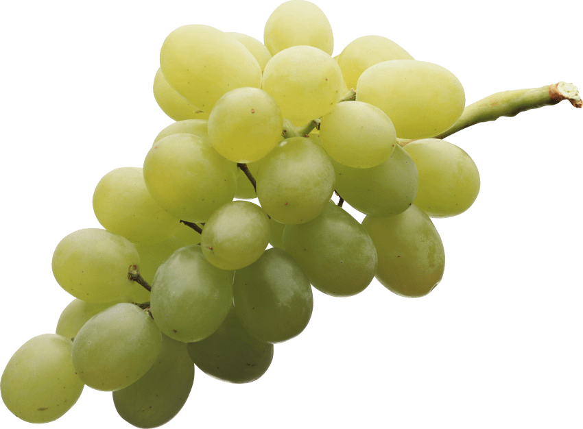 Green png free images. Grapes clipart frame