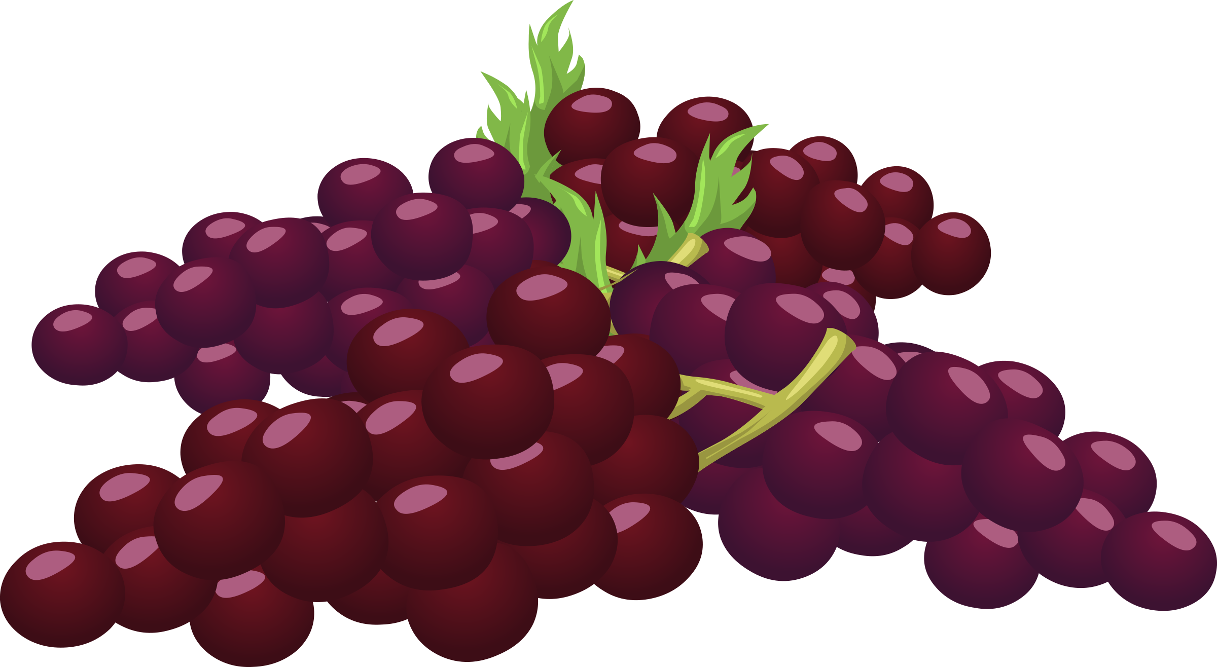 Grapes clipart purple food. Bunch of big image