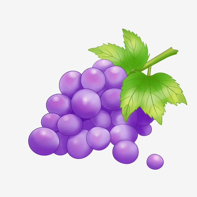 Fruit fresh png . Grapes clipart summer