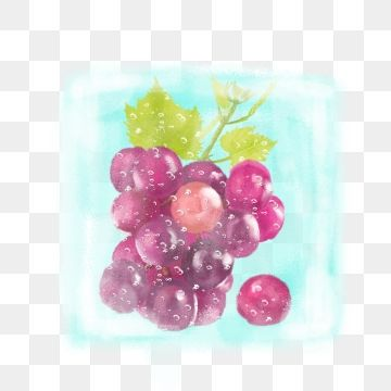 Grapes clipart summer.  hand painted fruit