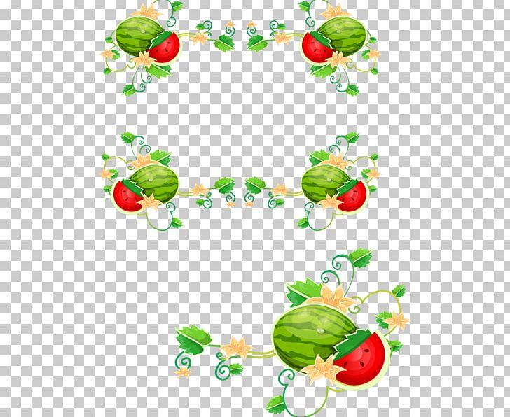 Common grape png border. Grapes clipart watermelon vine