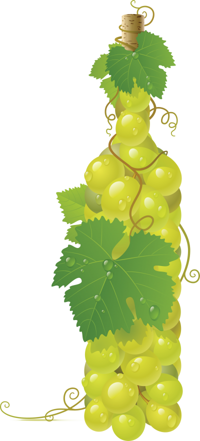 Isolated photos of search. Grapes clipart wine glass