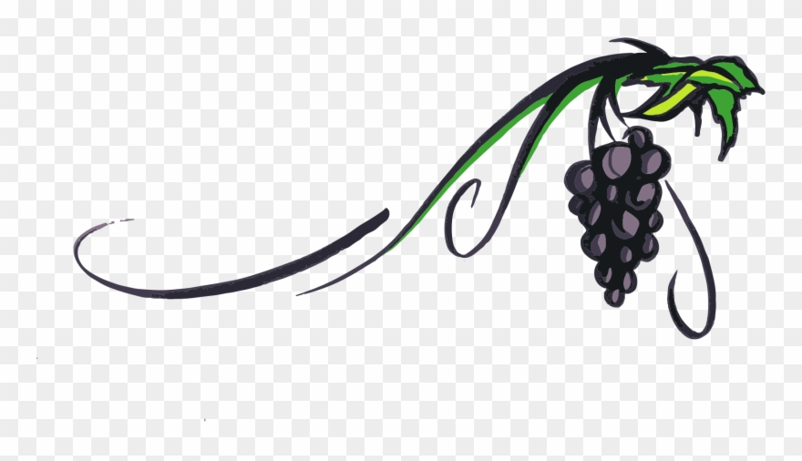 Simple free vine cliparts. Grapes clipart wine grape