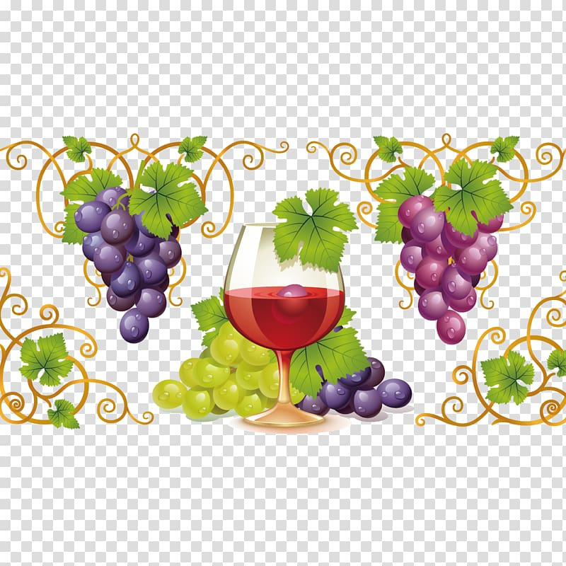 Grapes clipart wine grape. Red common vine and