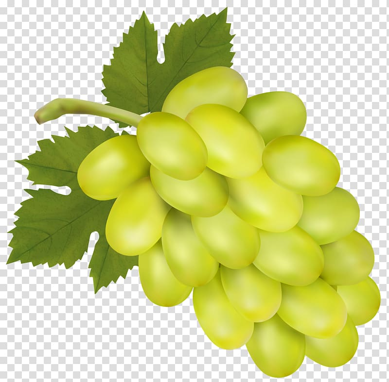 Grapes clipart yellow. Green sultana grape ros