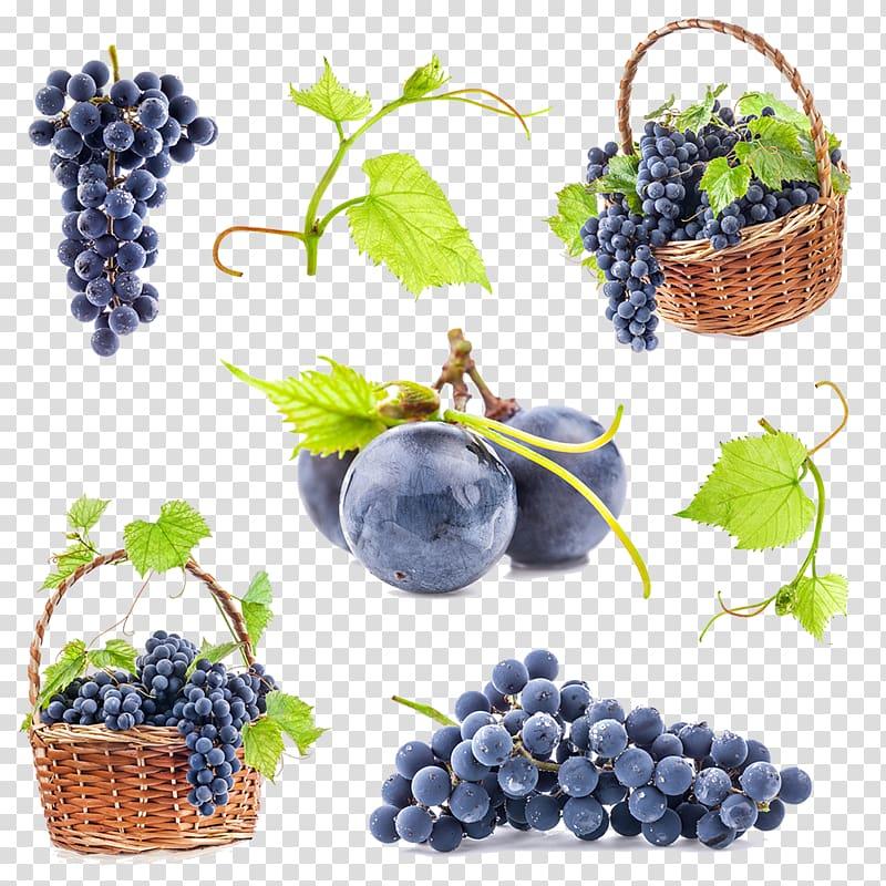 Grapevine clipart berry vine. Bunch of grapes common