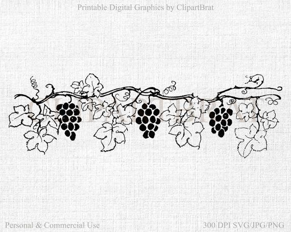 Vine commercial use vector. Grapevine clipart grape garden
