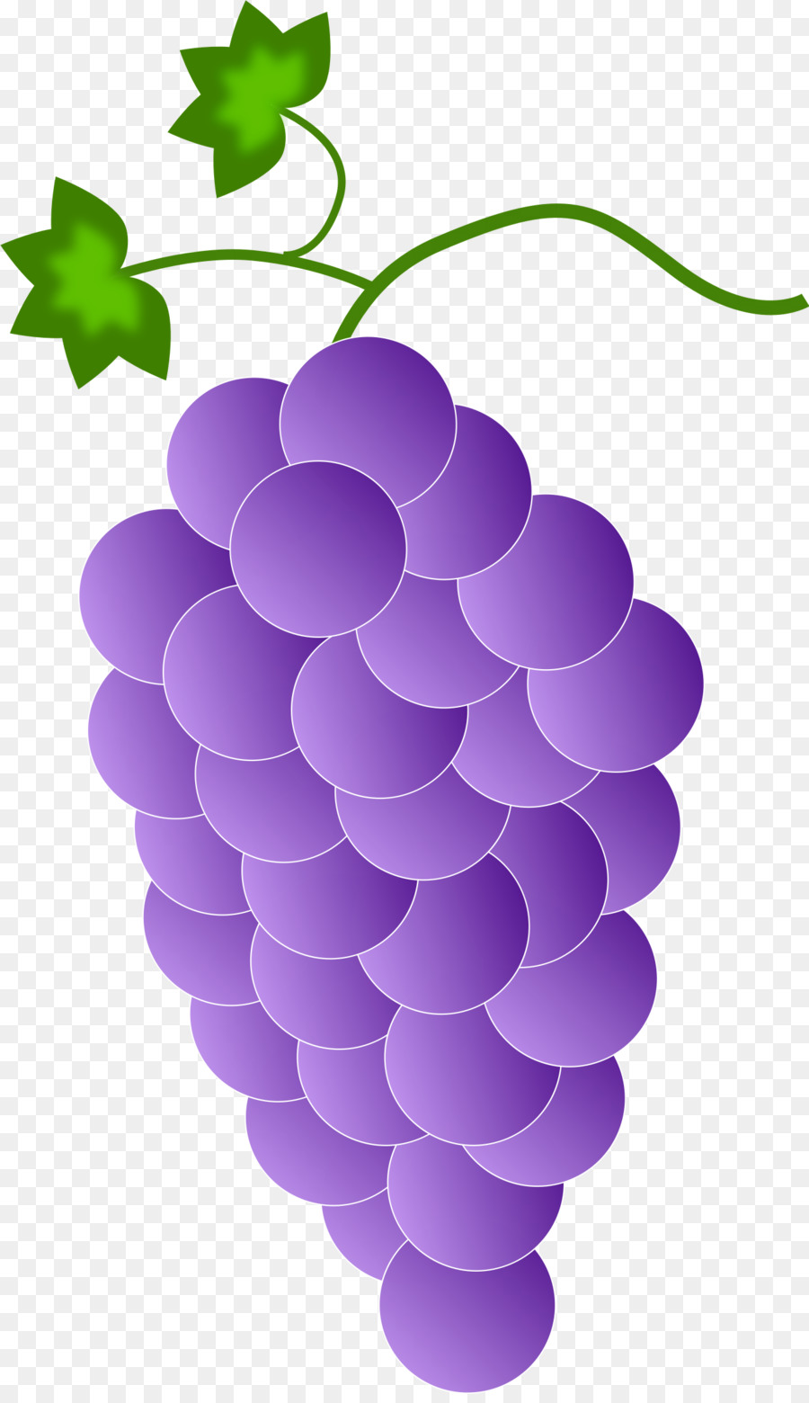 Grapes clipart purple food. Grape cartoon wine transparent