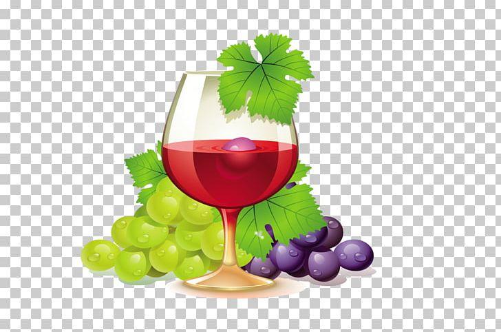 White common grape vine. Grapevine clipart wine tasting