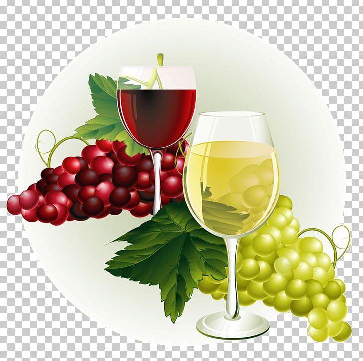 Grapevine clipart winery. Wine common grape vine
