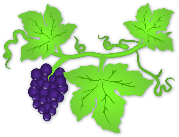 Panda free images grapevineclipart. Grapevine clipart