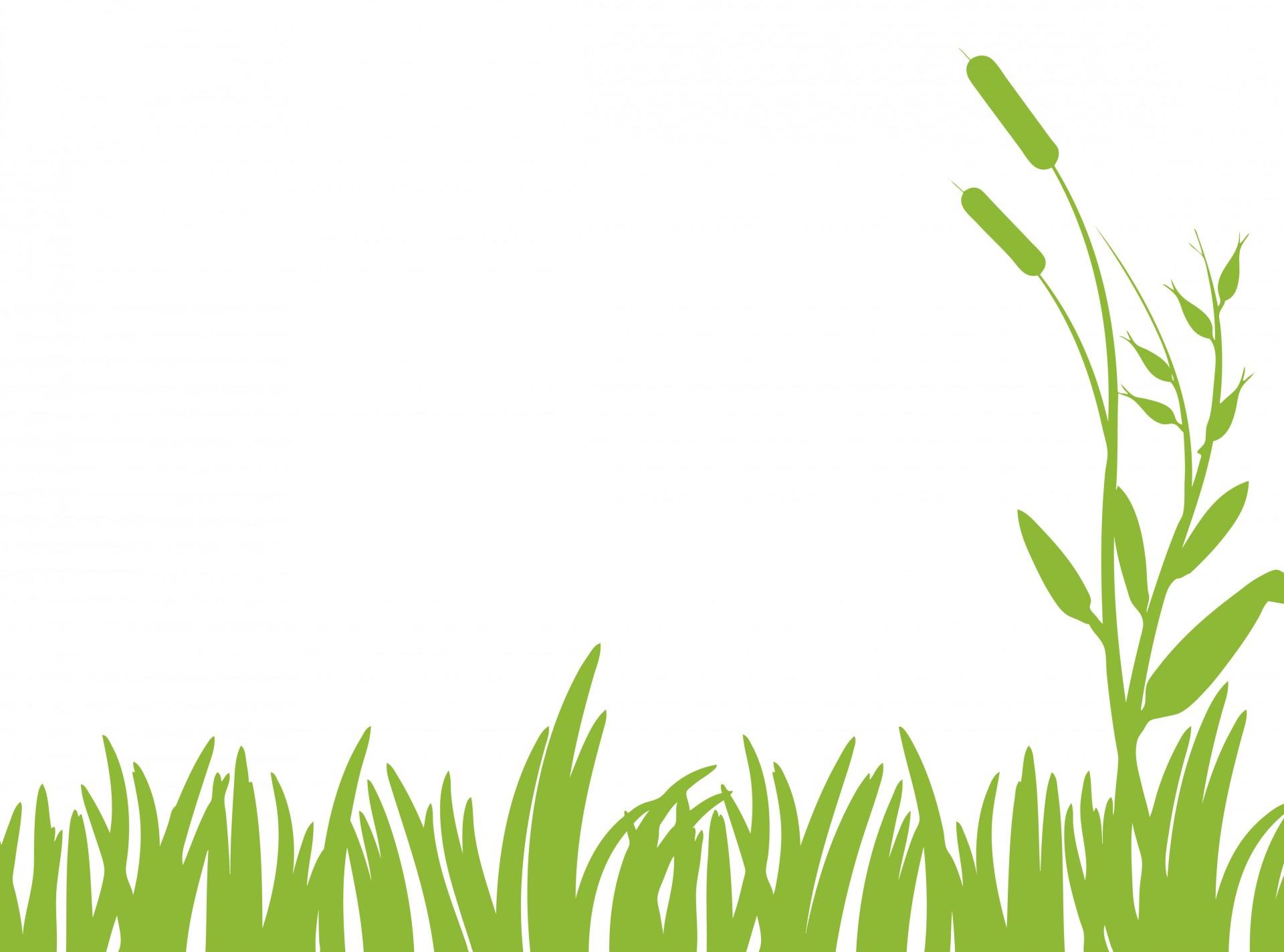 Clipart grass jpeg. Green free stock photo