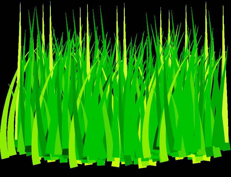 Clipart grass buffalo grass. Free to use wikiclipart