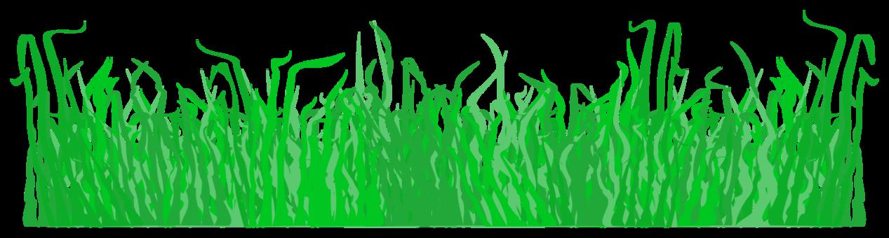 Maze clipart bush. Lawn mowers garden aeration