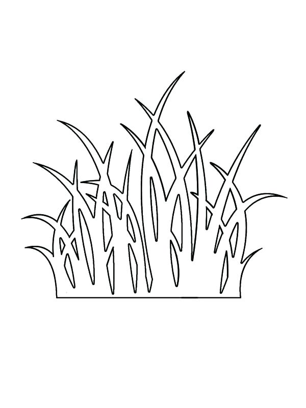Download coloring book drawing. Grass clipart outline