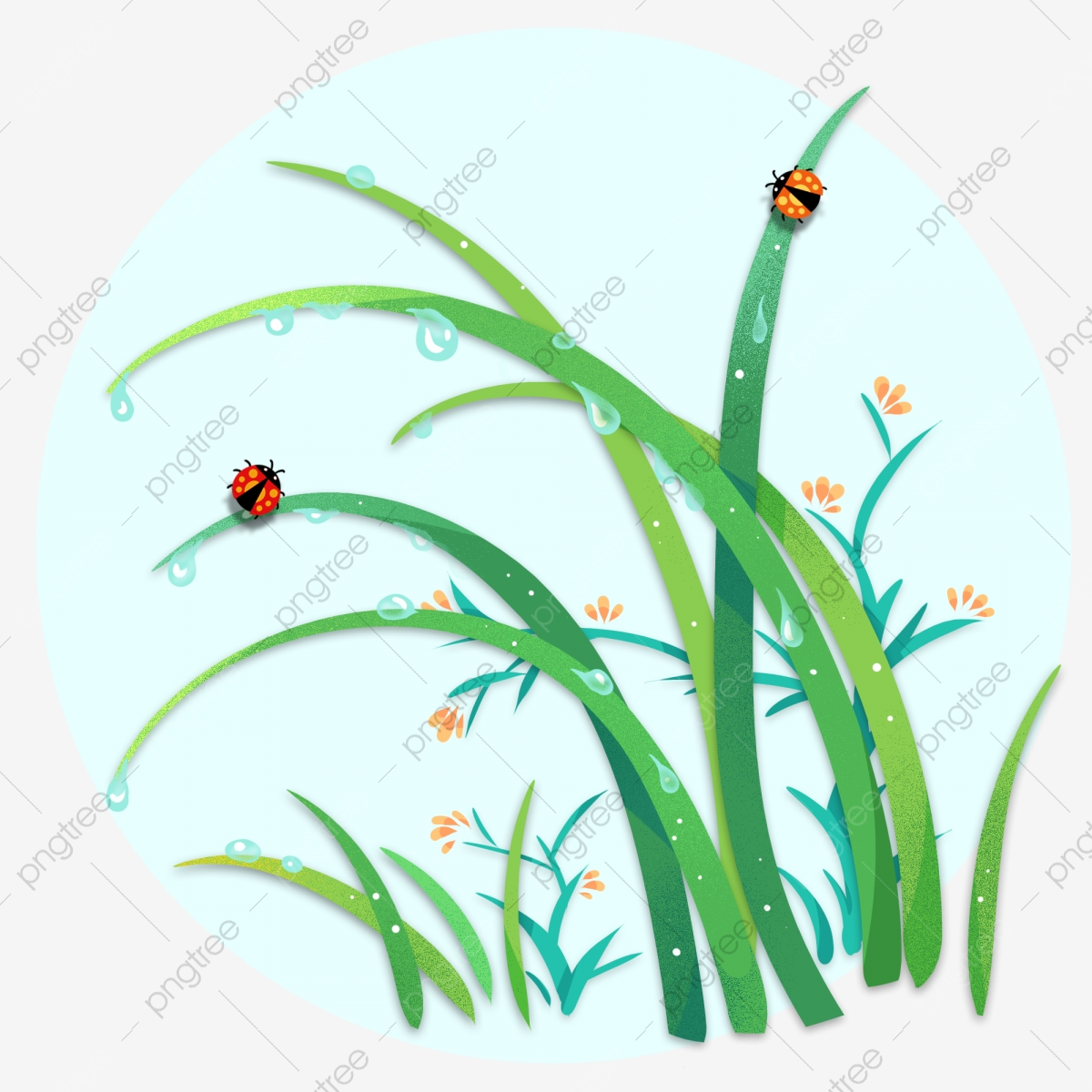 Grass clipart rain. Valley plant small fresh