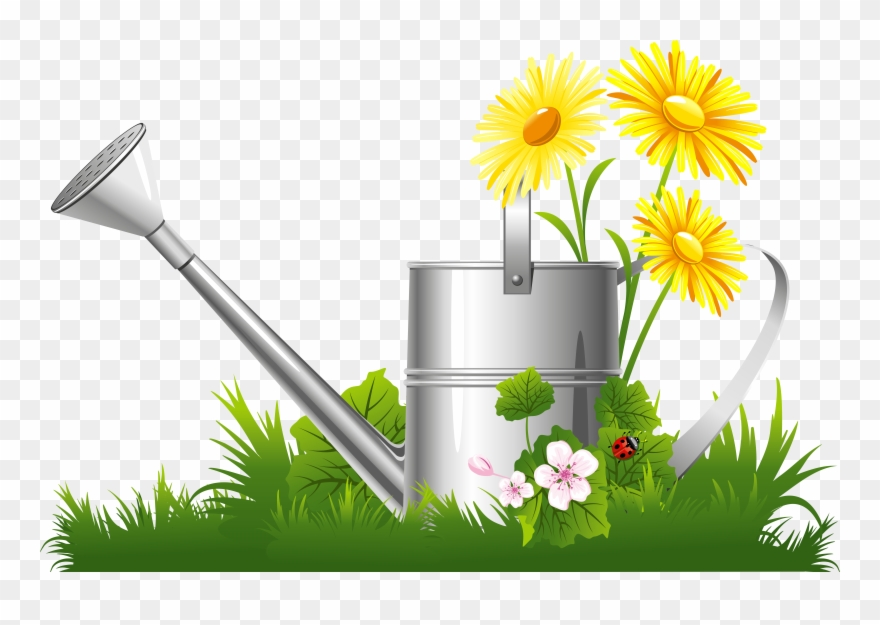 Grass clipart spring. Camomile png download