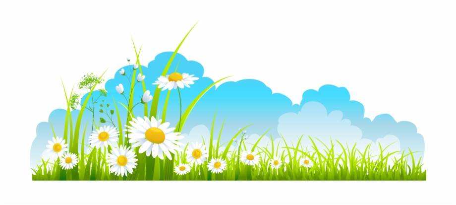 Image stock sky and. Grass clipart spring