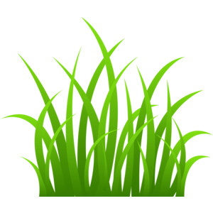 Black and white google. Grass clipart spring
