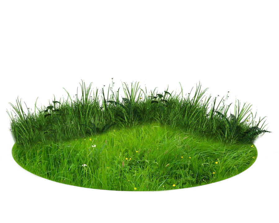 Png patch of land. Grass clipart translucent