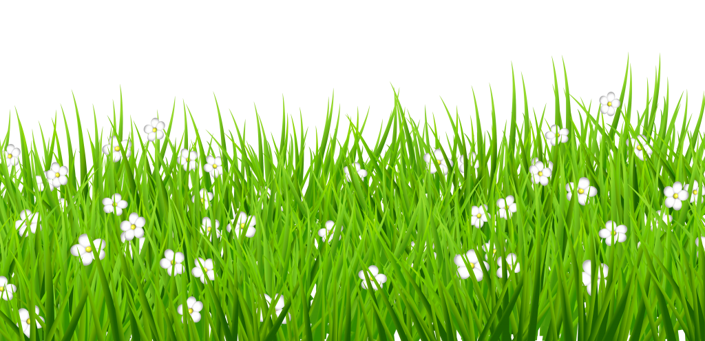 Decorative png picture peoplepng. Grass clipart watercolor