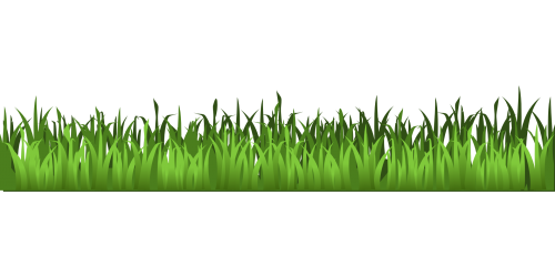 Clipart grass corner. Meadow green isolated stock