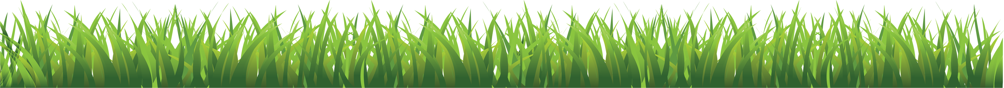 Pictures image green picture. Grass png images