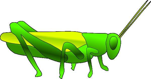 Bug clipart grass hopper. Grasshopper images panda free