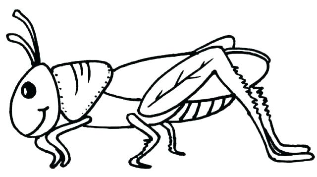 Grasshopper clipart color. Line drawing at paintingvalley