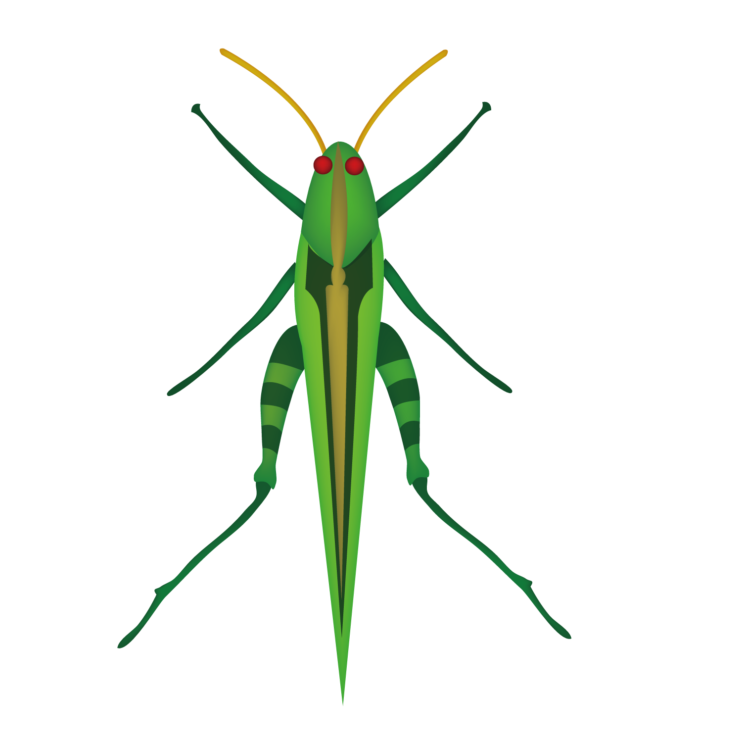 Insect clipart insect grasshopper. Mosquito locust clip art