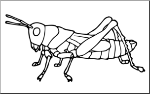 Grasshopper clipart insect grasshopper. Clip art insects b