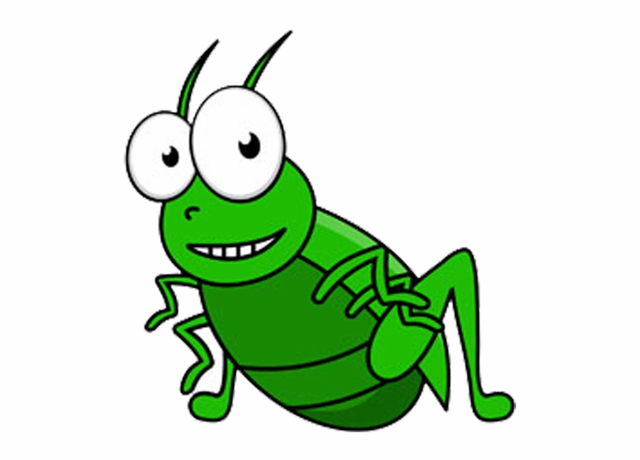 Field cricket grasshopper clip. Insects clipart green insect