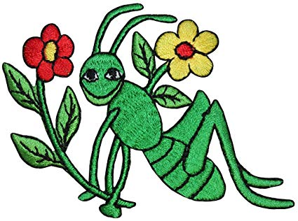 Grasshopper clipart patch. Id and flowers smile