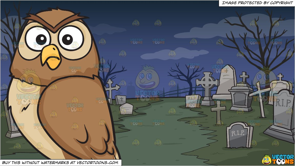A shocked owl and. Graveyard clipart night