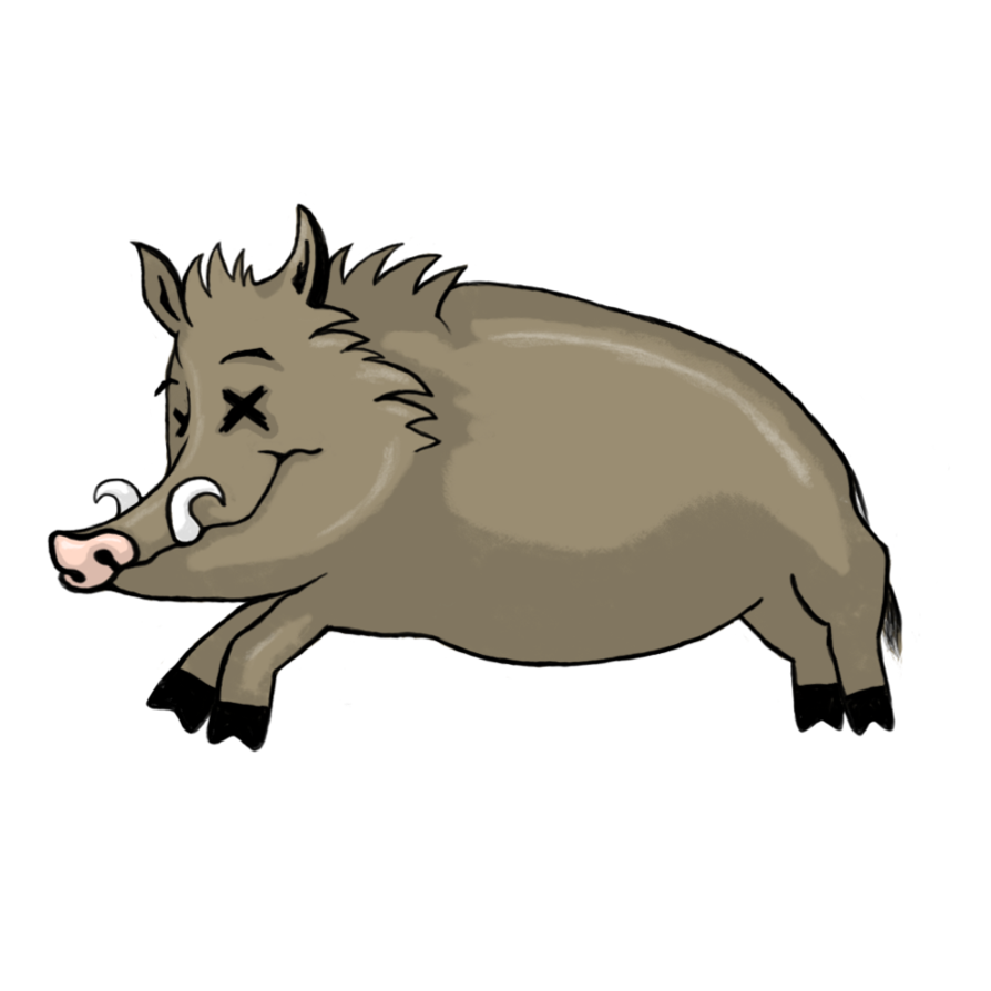 Collection of boar by. Hog clipart male pig