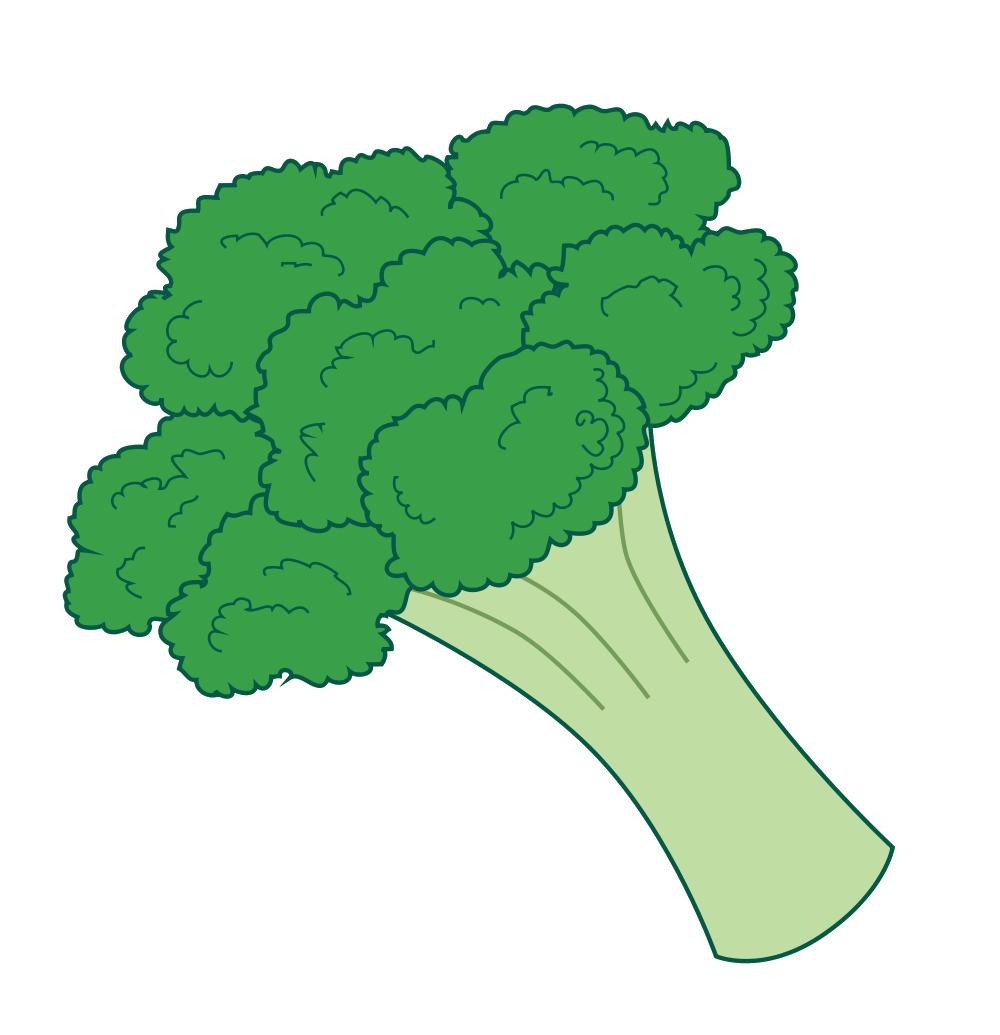 green clipart brocolli