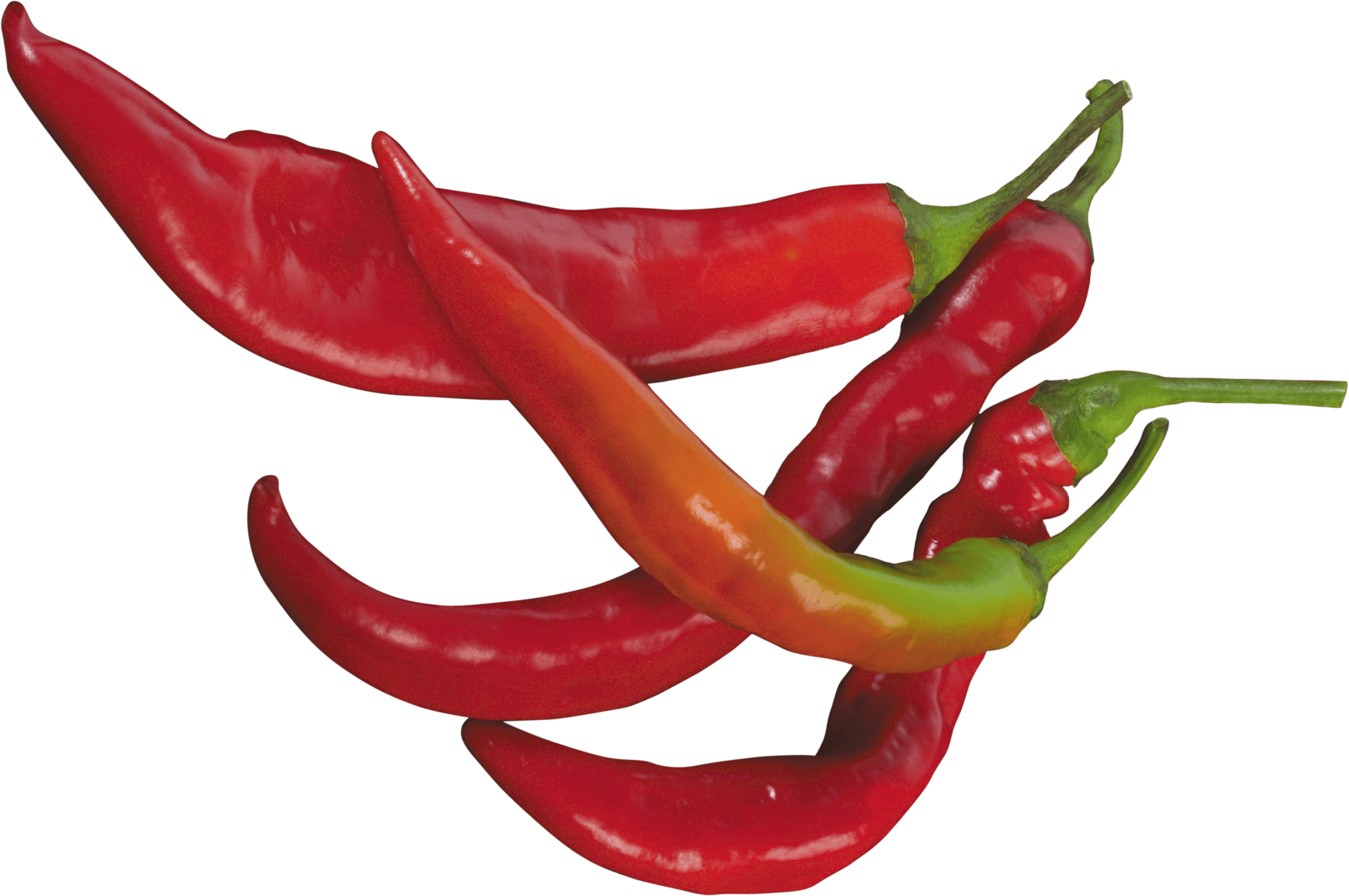 Peppers clipart serrano pepper. Red chilli transparent png