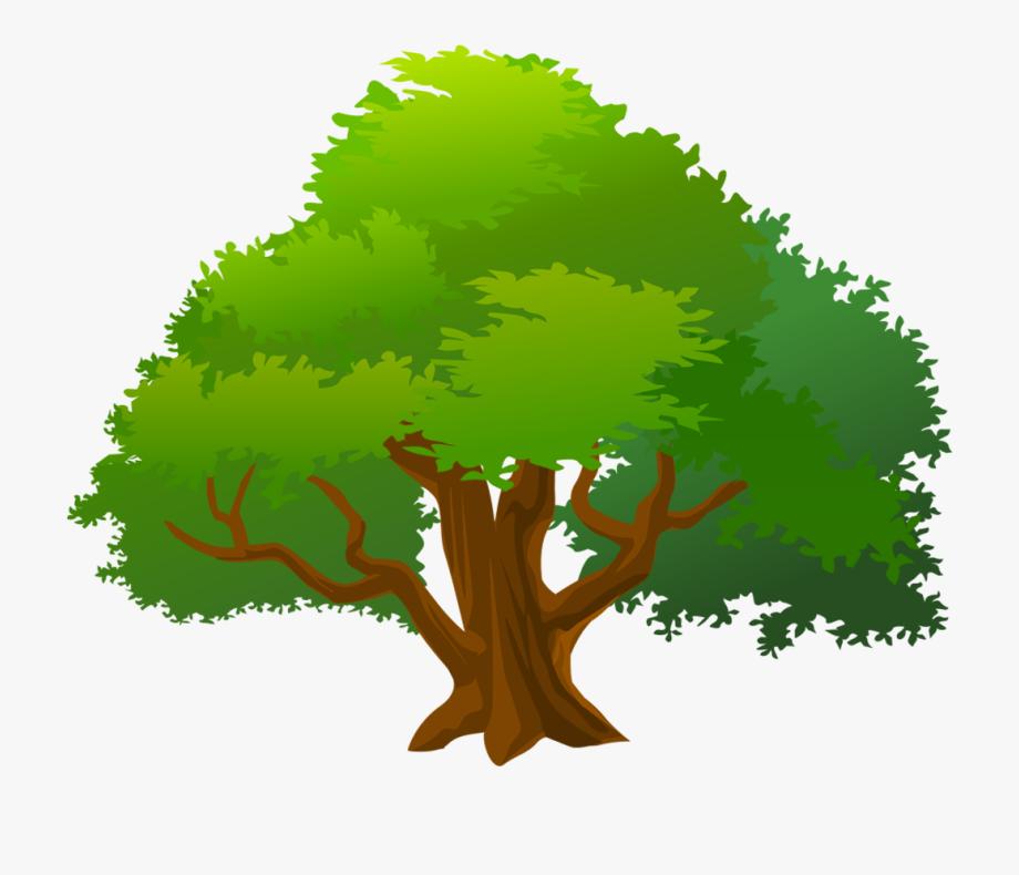 Clip art png download. Mango clipart tree