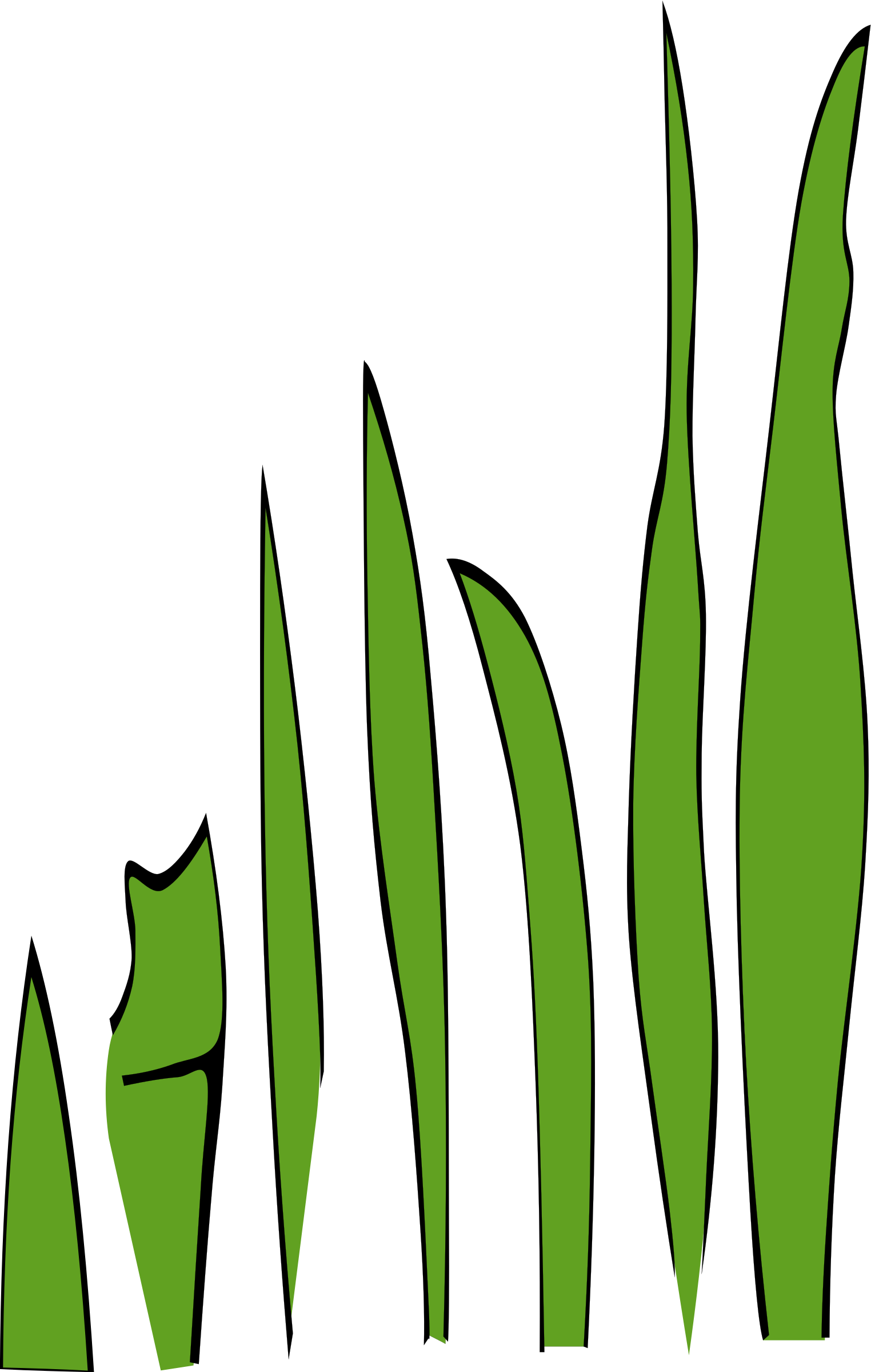 Green clipart okra. Grass blades and clumps