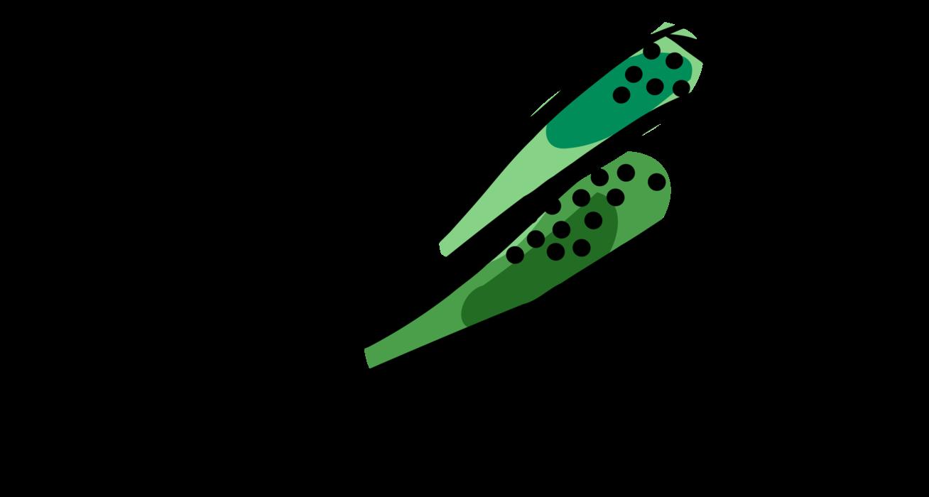Green clipart okra. Edible seed pods vector