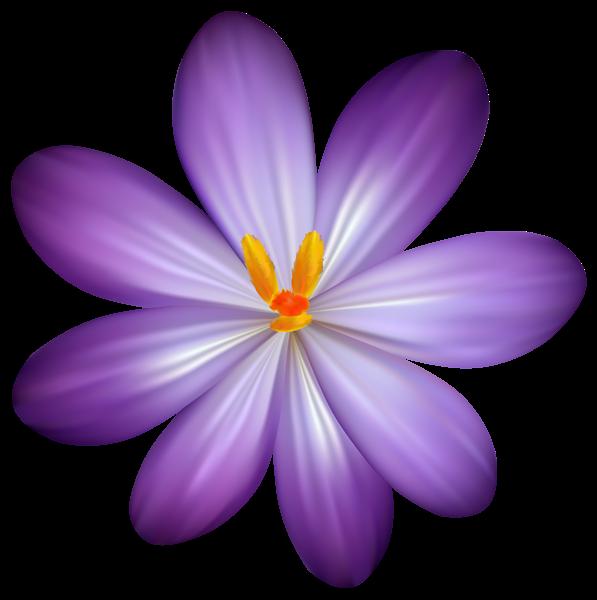 Lavender clipart cross. Purple crocus flower png
