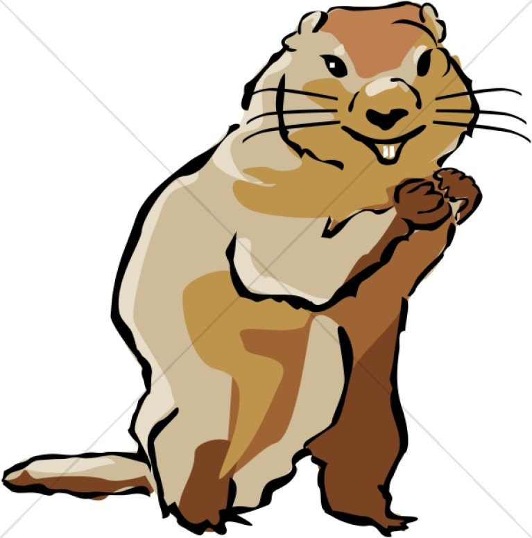 In color wildlife. Groundhog clipart