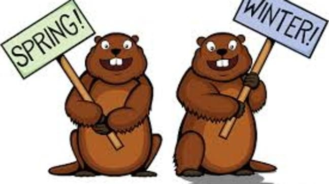 Saturday is day here. Groundhog clipart february 2
