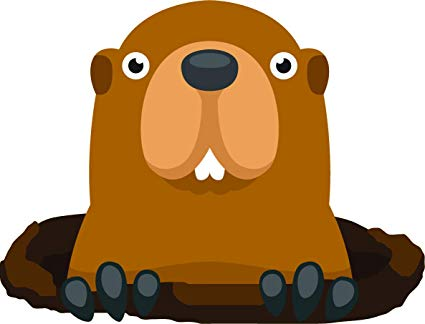 Groundhog clipart gopher. Amazon com cute funny