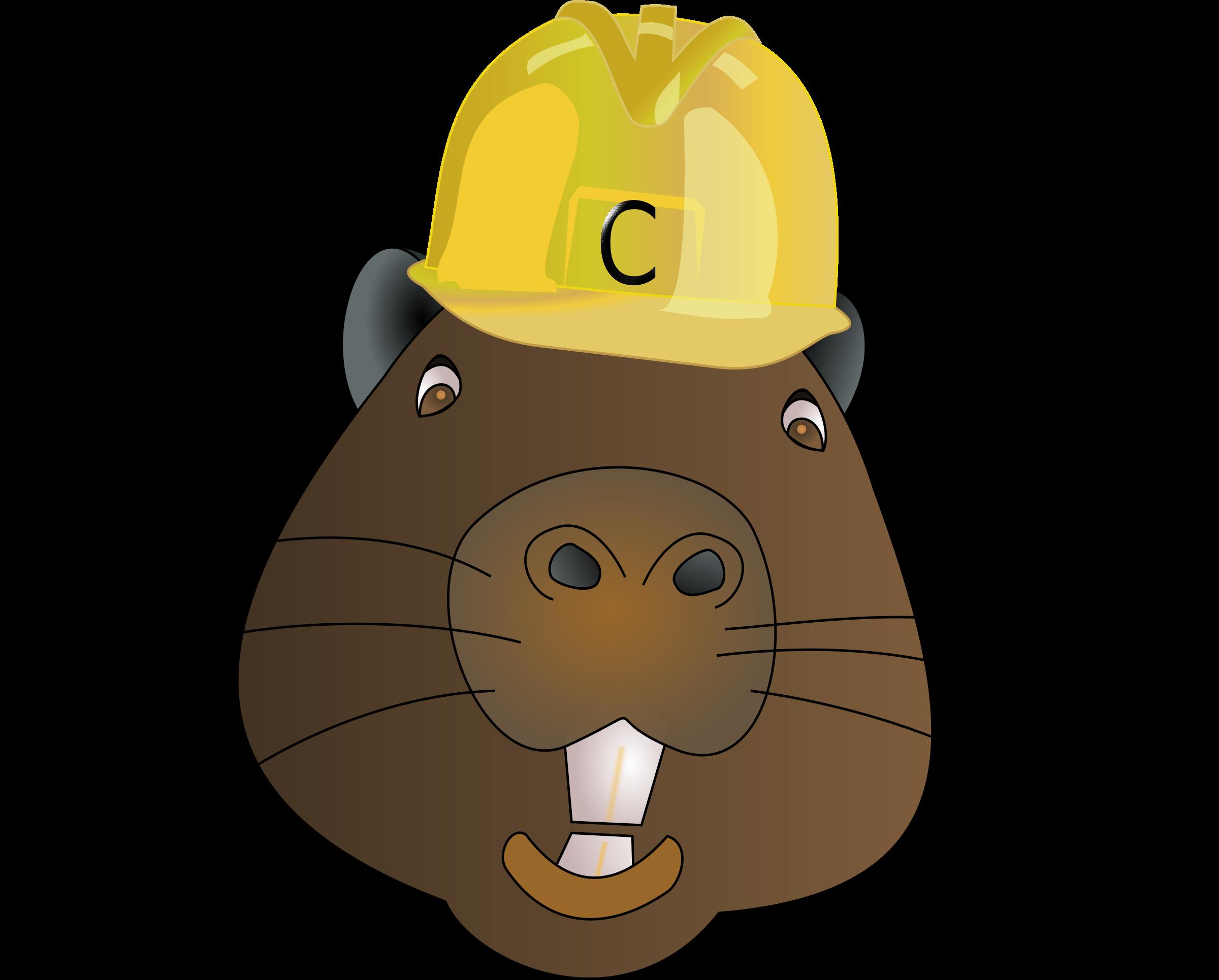 Castor big image png. Groundhog clipart groundhog day