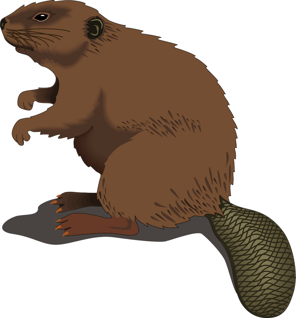 groundhog clipart groundhog hole