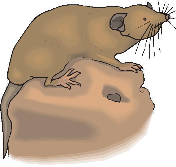 Aboveground clip art at. Groundhog clipart mole