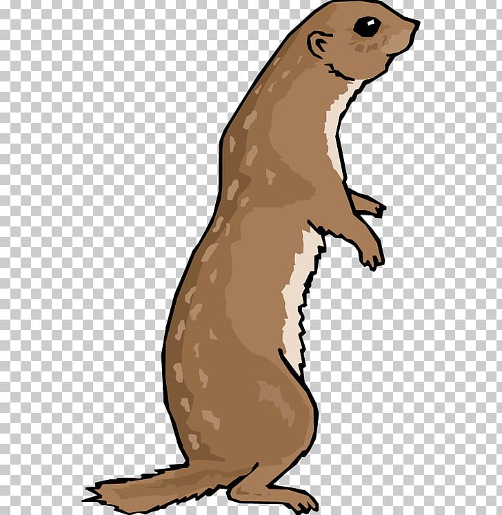 Otter clipart prairie dog. Black tailed png animal